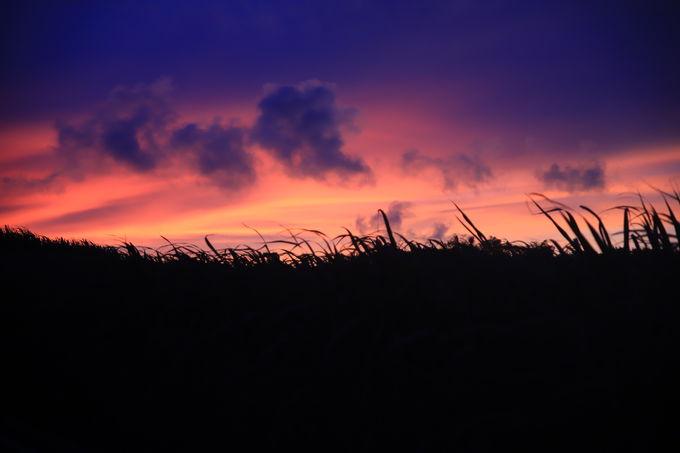 非日常の時間。「奥武島」で感動的な朝焼けを楽しむ!