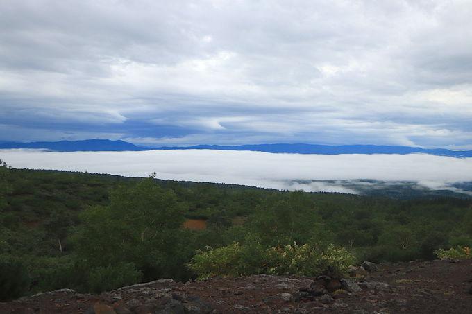 荒涼たる火山山塊を望む!大迫力の「十勝岳望岳台」