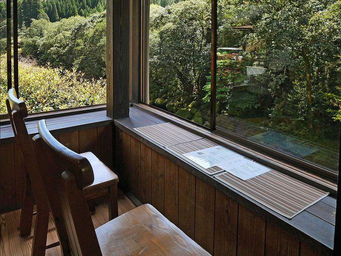 窓際の特等席で、渓谷を見下ろしての珈琲タイム