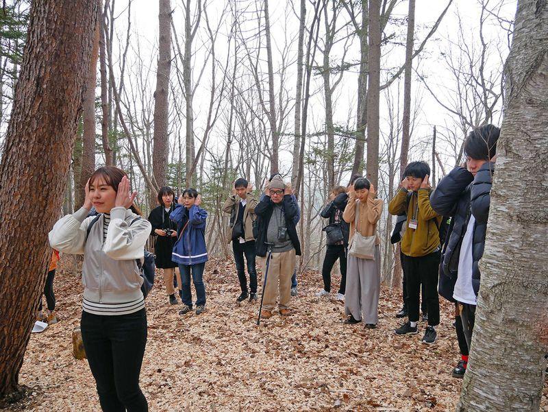 森の癒し体験