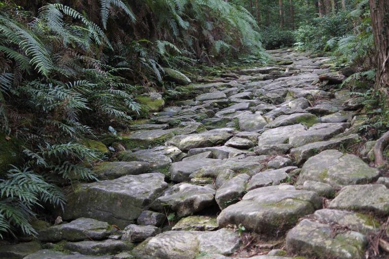 珍しい道の世界遺産「熊野古道」