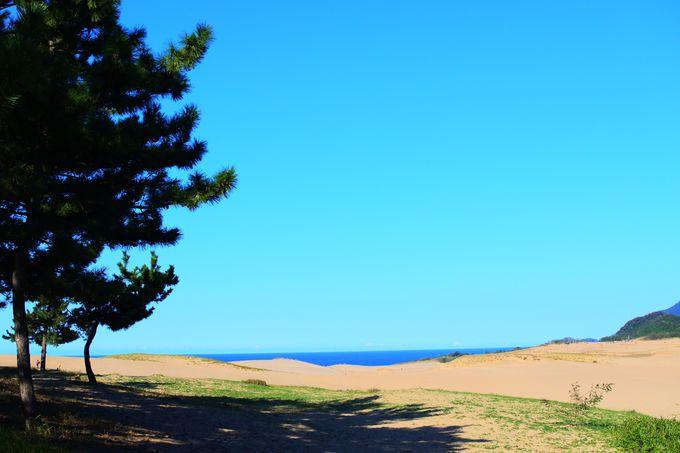 鳥取砂丘へのアクセス!