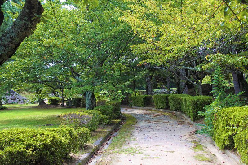 趣と歴史が感じられる山口・萩城跡指月公園を思いっきり満喫!