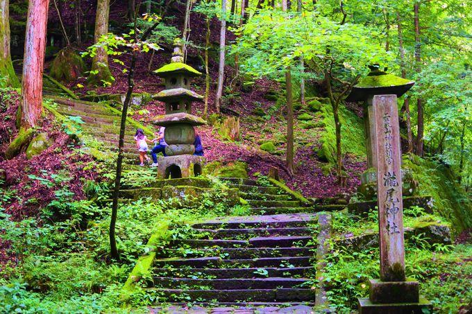 日光のパワースポット「滝尾神社」!