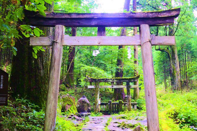 子宝運アップの「滝尾神社」