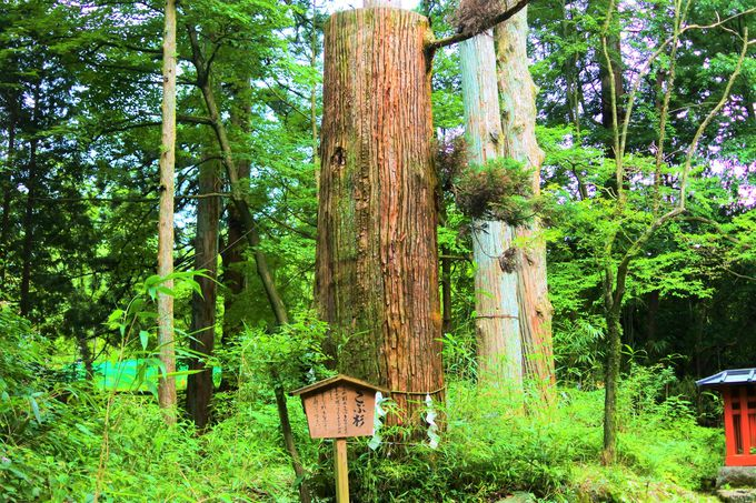 二荒山神社の発祥地「本宮神社」