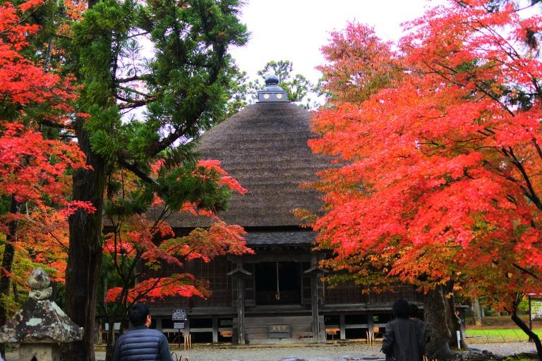 岩手・平泉「毛越寺庭園」の紅葉は圧巻!浄土世界へのいざない