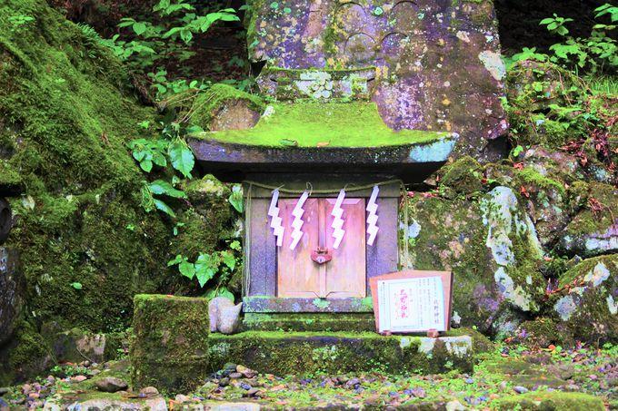 学問の神様が祀られている「北野神社」