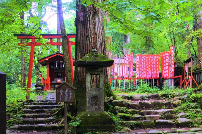 子宝運で有名な「滝尾神社」