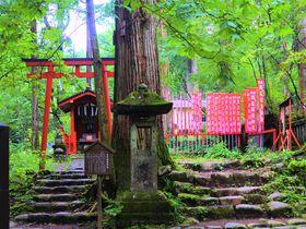 歴史ある栃木・日光「滝尾古道」でご利益満載のハイキングを楽しもう