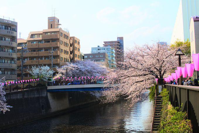 目黒川へのアクセス!
