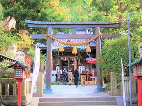 厄除けのご利益満載!厄男、厄女なら絶対行くべき鎌倉「八雲神社」