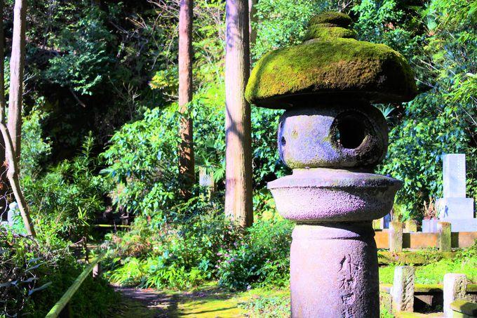 妙法寺へのアクセス!