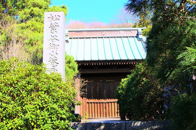 妙法寺の歴史!
