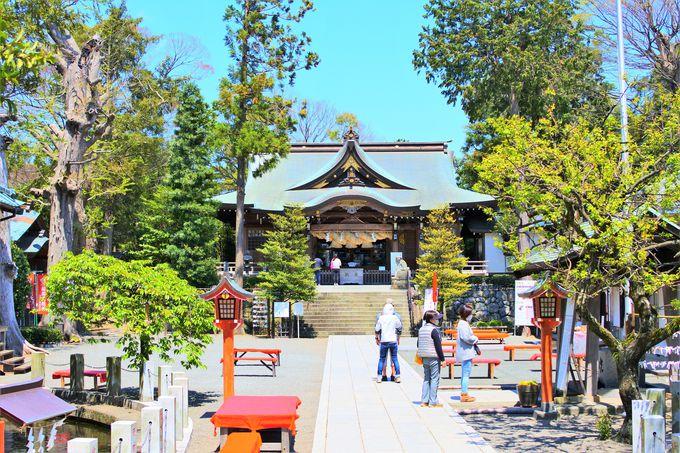 由緒ある六所神社!
