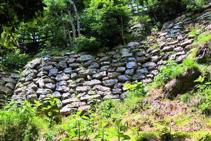 岐阜公園へのアクセス!