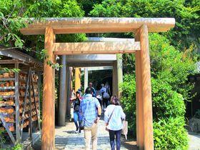 鎌倉を代表する金運アップの神社「銭洗弁財天」北条家も繁栄祈願
