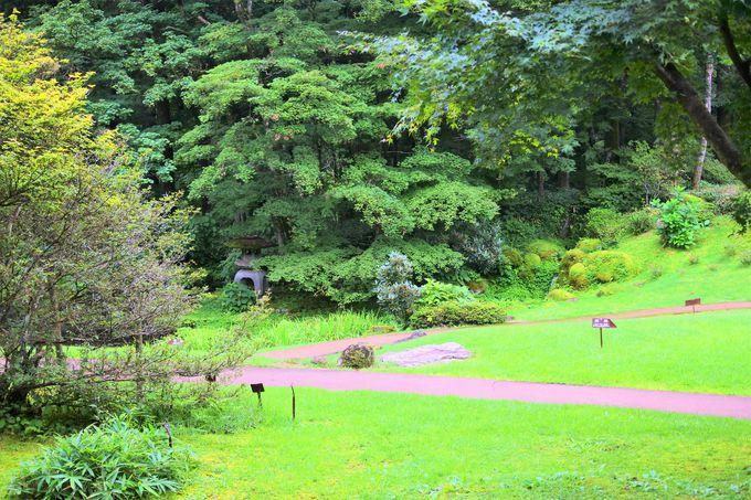 緑に囲まれた自然豊かな記念公園!