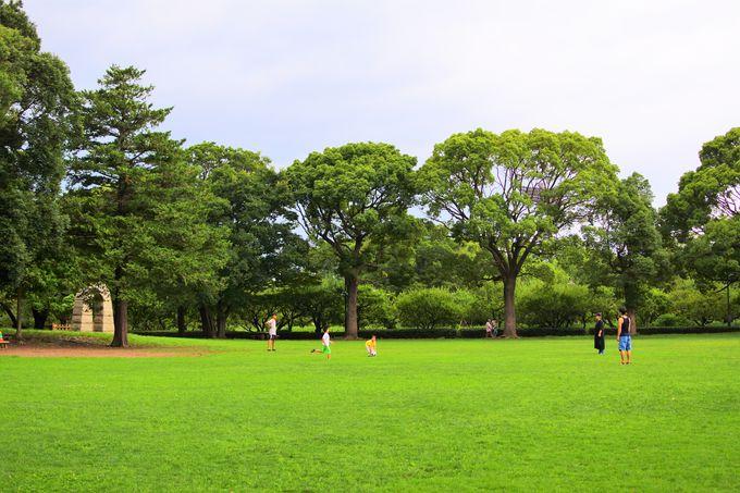 平塚市総合公園について