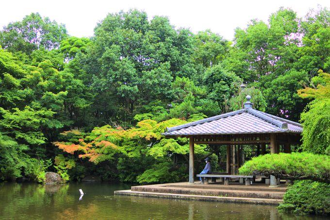 優雅な時が過ごせる「日本庭園」