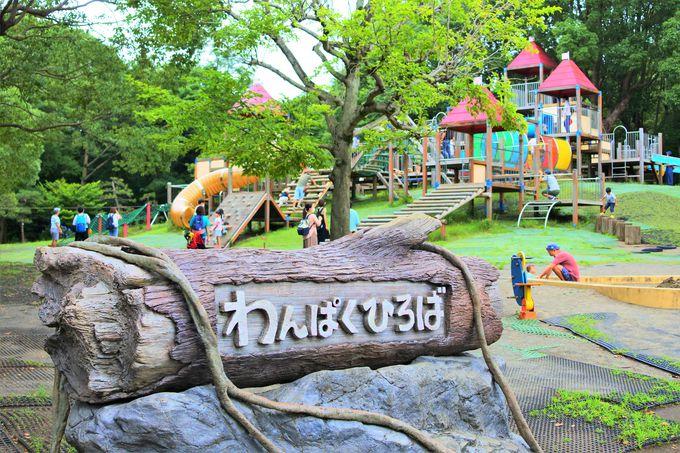 子どもが遊べる「わんぱく広場」