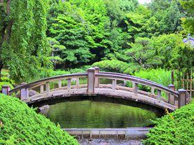 隠れた日本庭園も!神奈川「平塚市総合公園」で過ごす優雅なひと時