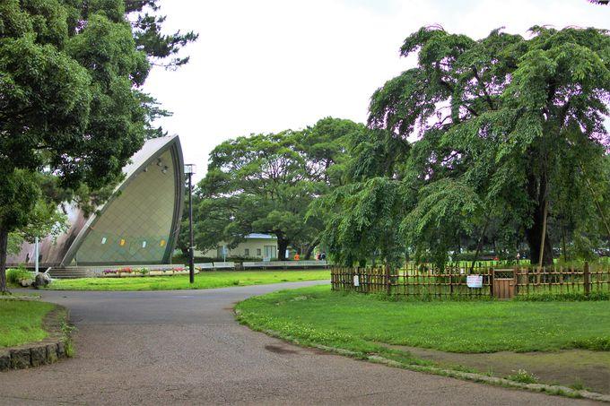 平塚市総合公園へのアクセス