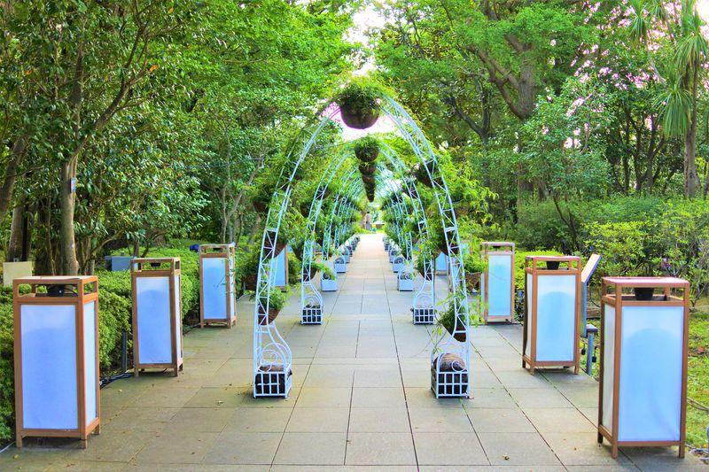 フォトジェニックな植物園「江の島サムエル・コッキング苑」を満喫!