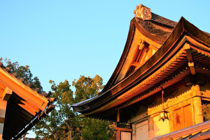 地主神社の歴史について
