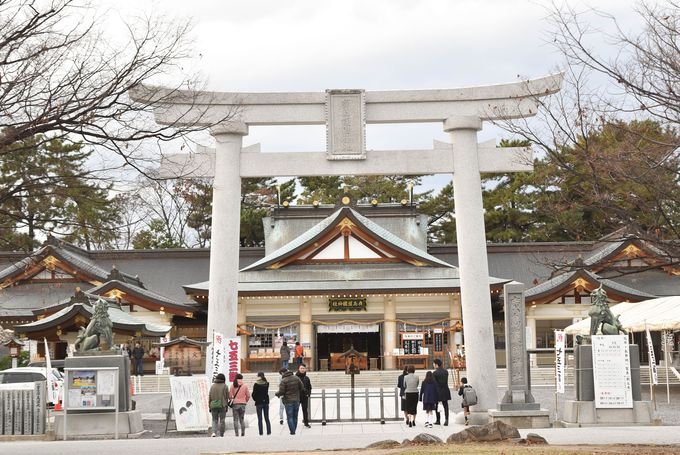広島城はどうして「コイの城」になったの?