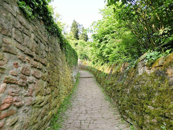 石畳小道を上った先に待つ絶景ビュー