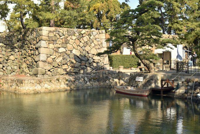 魚が泳ぐ水堀と松並木を近くで楽しむ