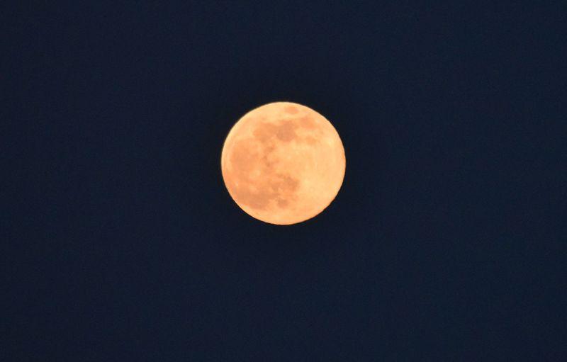「荒城の月」の舞台・岡城で愛でる初夏のストロベリームーン