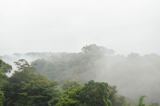 「天の川」が発生しやすい時期と場所