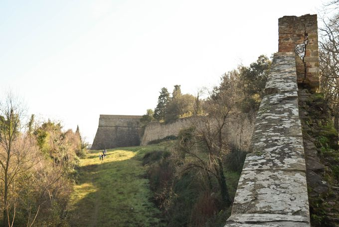 丘の上にそびえるメディチ要塞