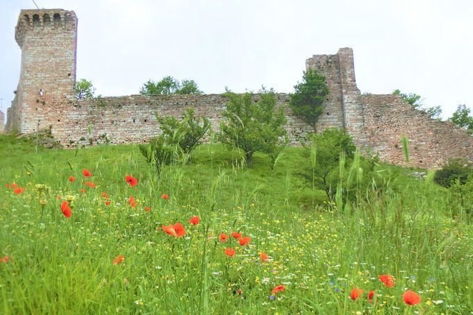 旧市街にそびえ立つマッジョーレ要塞へ