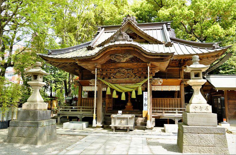 ご利益が凄い!全国屈指の龍神パワースポット!東京「田無神社」