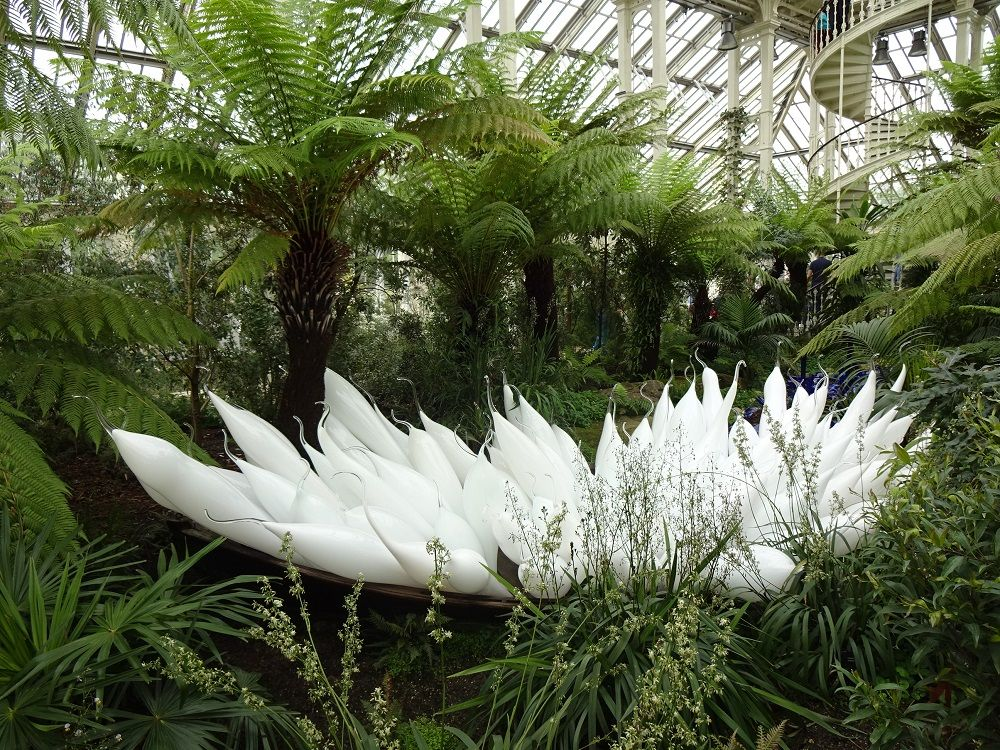 ヴィクトリア時代の華麗な温室にも、チフーリ作品が彩りを添えて