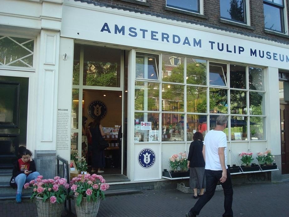 園芸国オランダの名産チューリップ!可愛いグッズも