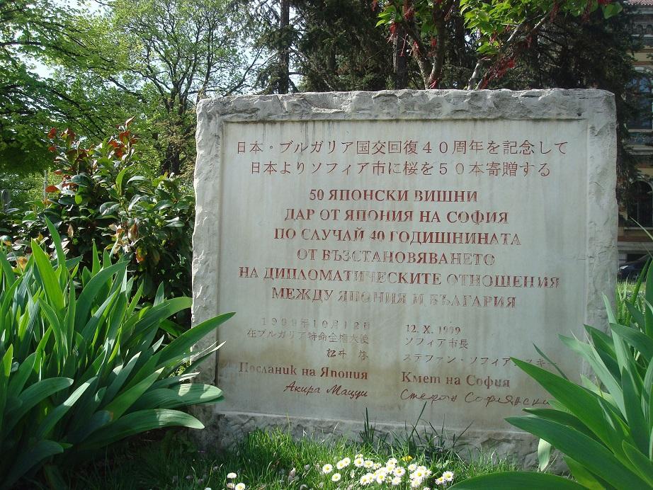 観光スポット満載のエリア 日本から贈られた桜がある公園も