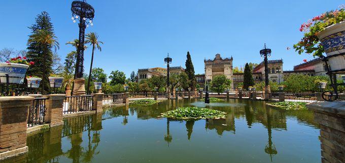 スペイン広場と合わせてマリア・ルイザ公園で散歩はいかがでしょう?