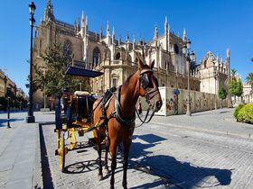 スペイン最大の大聖堂「セビリア大聖堂」は圧倒的な存在感