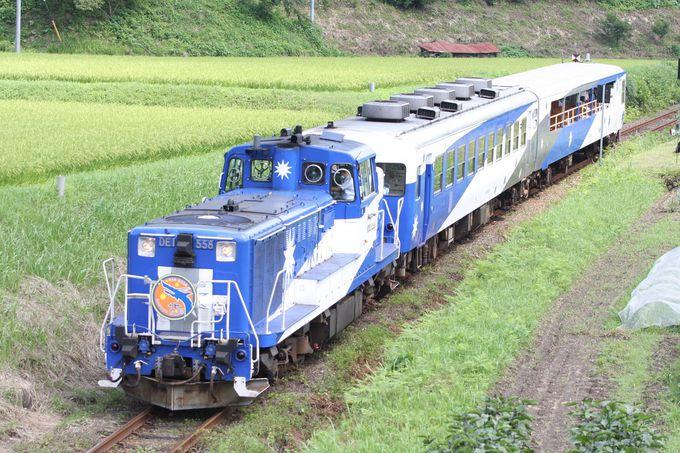 トロッコ列車でのんびり旅もお勧め!