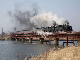 北海道のおすすめ観光列車4選!くしろ湿原ノロッコ号にSL冬の湿原号も