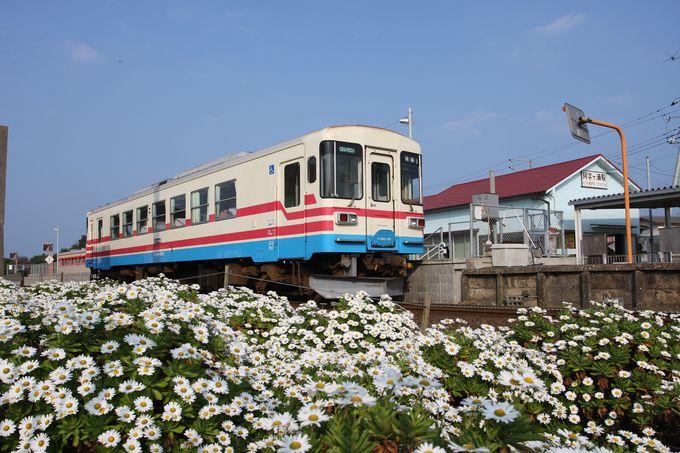 終着駅は阿字ヶ浦…海まで散策してみよう!