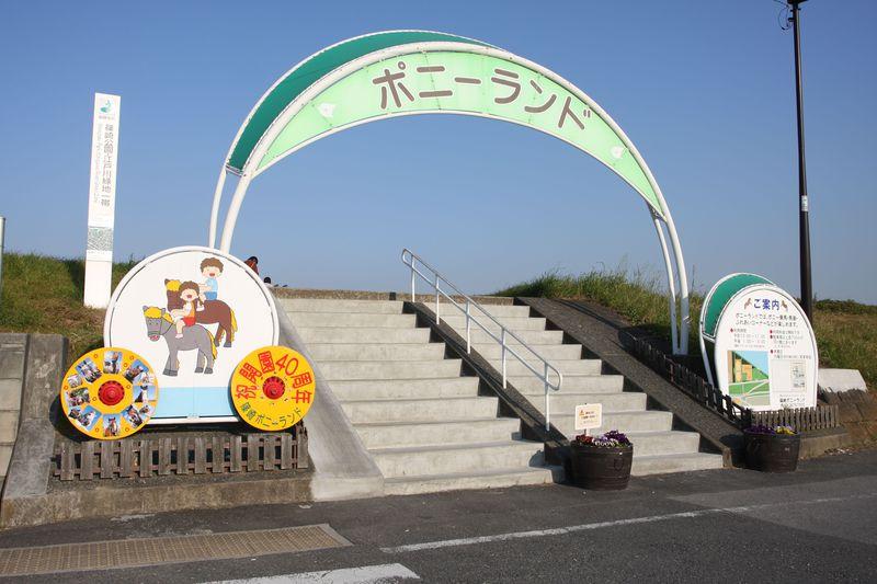 東京・江戸川区で乗馬体験〜子どもは無料!篠崎ポニーランド