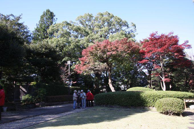 6.戸定が丘歴史公園