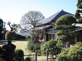 徳川の歴史遺産と絶品つけ麺!松戸「戸定が丘歴史公園」ベストコース