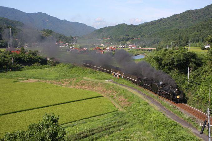 山里の風景を撮るなら渡川へ