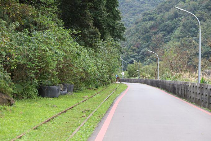 旧線路跡の遊歩道を歩こう